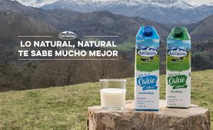 Nueva leche calcio