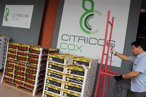 Cítricos Cox