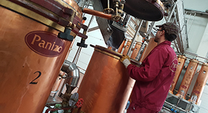Destilación de orujo